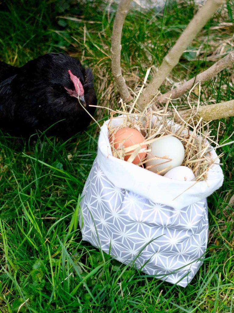 Das Huhn schaut den Lunchbag an.